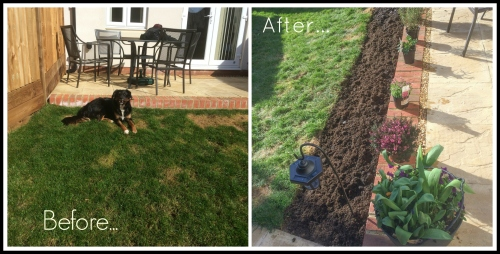 garden project two