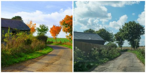 Autumn comparison